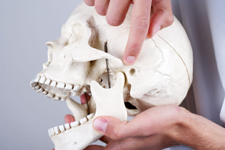 dentist explaining what a TMJ joint is